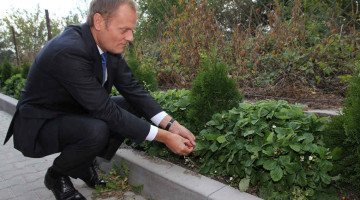 What role – if not of a recorder of Angela Merkel's ideas – could Donald Tusk play?